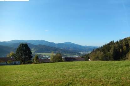 Einmalige Projektmöglichkeit über Kindberg (30951)