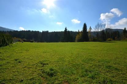 Ideal für Jungfamilien! Ländliches Baugrundstück im Bezirk Feldkirchen