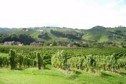 Bauerwartungsland - 1 ha Weingarten
