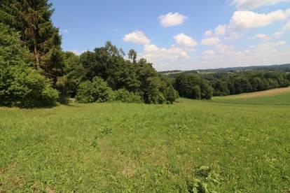 Grundstück in erhöhter Ruhelage mit herrlicher Aussicht / Nähe: Hausmannstätten / Hühnerberg