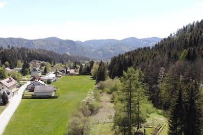 Baugrundstück für 4 Einfamilienhäuser im Wander- und Schigebiet Hochschwab