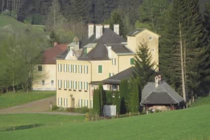 Preisreduktion! Exklusives Herrenhaus mit ca. 1,6 Hektar Grund + 7-Parteien-Zinshaus + Jagdhütte + Stallungen + san.bed. EFH!!!