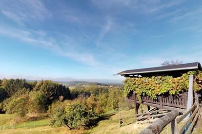 6ha Landwirtschaft, Graz-Umgebung, 8323, bis Graz ca. 25km - Aussicht und Ruhe
