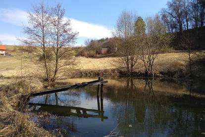 Idyllische Liegenschaft in Eichkögl mit Teich für Naturliebhaber!
