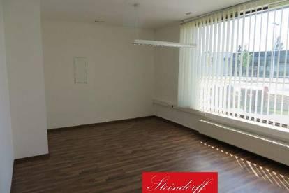 Perfekte Kombination - hochwertiges Büro mit Schauraum und Lagerflächen in Frequenzlage in 8430 Leibnitz - Wagna
