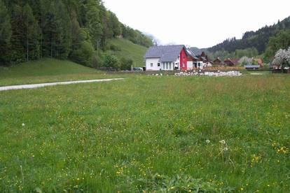 Baugrundstücke in der Rosenau am Hengstpass