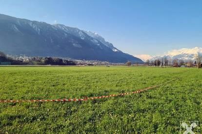 Feldkirch-Tosters: wunderschönes grenznahes, sonniges Baugrundstück