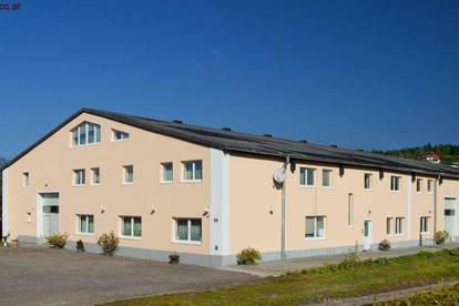 5% Rendite bei Vollvermietung! Zinshaus mit 21 Wohnungen am Stadtrand von Rohrbach-Berg