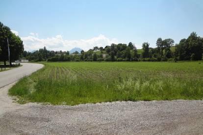 Mischbaugrund Vorchdorf