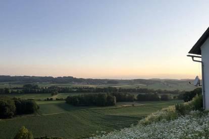 2 Hektar Weingartenfläche zu verpachten