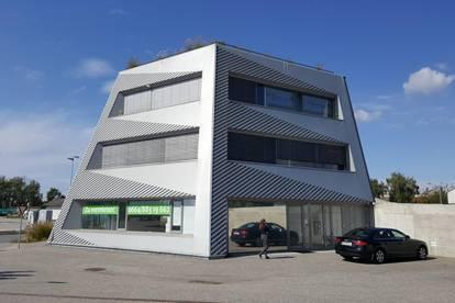 Modernes Büro in Querkraft-Haus - 44 m²