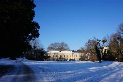 Wunderschönes Einfamilienhaus mit 5 Schlafzimmern, 3 Bädern in bester Lage am Pötzleinsdorfer Schlosspark - nahe zur Amerikanischen Schule / Lycee Francais