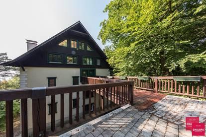 Dachgeschossmaisonette am Kahlenberg - Natur pur inmitten des Höhenwaldes und doch nah zur Stadt
