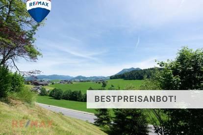 Kleines aber feines Grundstück in Hanglage in Schwarzenberg