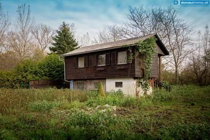 3425 Tullner Au Stelzenhaus mit Potenzial auf sonnigem, idyllischen Pachtgrund