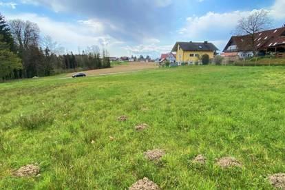 Baugrundstücke in St. Stefan ob Stainz