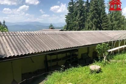 Lagerhalle in Bärnbach
