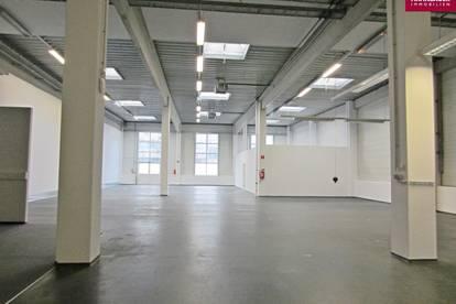 Lagerhalle 401 m2 + Büro 218 m2 Kombination südlich von Wien, in Wr. Neudorf zu mieten