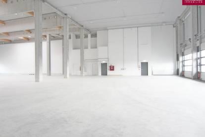 Lagerhalle 1962 m2 + Büro 226 m2 Kombination südlich von Wien, in Wr. Neudorf zu mieten