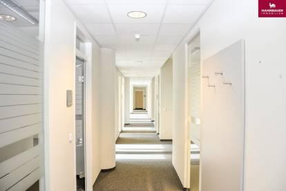 Modernes Büro 579 m2 zu mieten, Tiefgarage, Schnellbahn, 1110 Wien