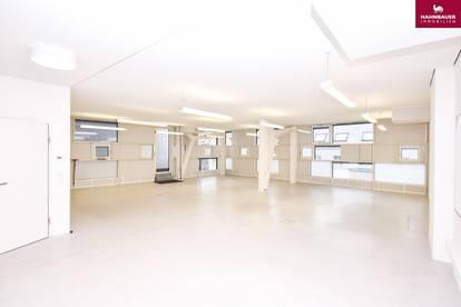 Büro neu in 1140 Wien, 156 m2 mit Terrasse