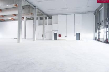 Lagerhalle 1460 m2 + Büro 341 m2 Kombination südlich von Wien in Wr. Neudorf