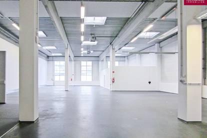 Lagerhalle 650 m2 + Büro 452 m2 Kombination südlich von Wien, in Wr. Neudorf