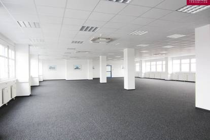 Lagerhalle 640 m2 + Büro 226 m2 Kombination südlich von Wien, in Wr. Neudorf