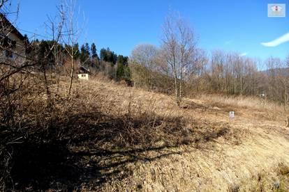 Schöner Baugrund in Himmelberg/Feldkirchen