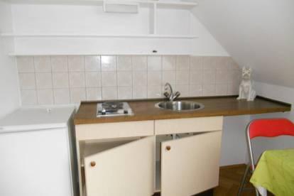 Einraumwohnung mit Küche  für ruhigen Dauermieter