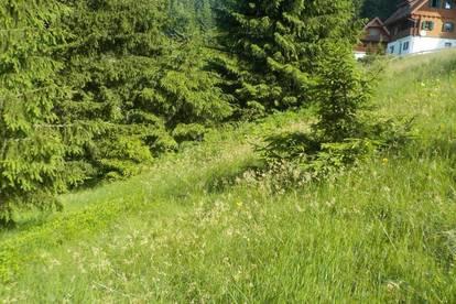 Schöner sonniger Baugrund  9431 St.Stefan/Rieding