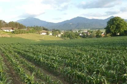 Bauland in ruhiger zentraler Dorflage mit Bergaussicht, individuell einteilbare Baugrundgröße