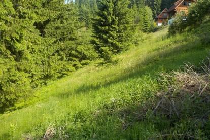 9431 St.Stefan/Rieding   Baugrund Eigenheim