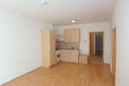 2-Zimmer Wohnung mit großer Terrasse in Mautern
