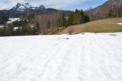 Grünlandgrundstück in Bad Aussee