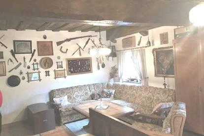 Altes Bauernhaus in 1000 m Seehöhe neu saniert, Fernsicht, Ruhelage