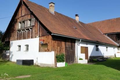 Bauernhaus + Stallgebäude auf wunderschönem Baugrund am Stadtrand von Voitsberg!