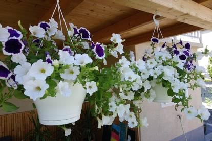 Neu saniertes Einfamilienhaus mit schönem Garten