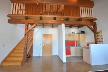 Coole Galerie-Wohnung Top 2 im Herzen vom Softwarepark Hagenberg