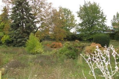 2 Grundstücke mit insgesamt 2.231m² Grundfläche in Mannswörth – Schwechat