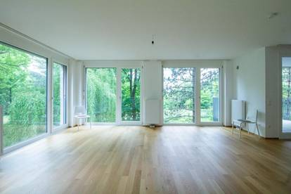 360° - EXPAT-apartment with a fantastic view to the castle lake of Liesing