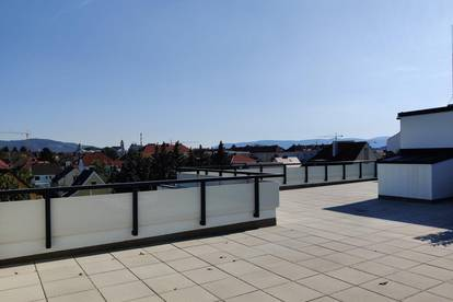 PROVISIONSFREI ! - KORNEUBURG - VORSORGE- und EIGENNUTZERWOHNUNGEN - ERSTBEZUG - Top 13 - opt. TIEFGARAGENPLATZ - FREIFLÄCHEN - moderne Wohnhausanlage - RUHIGE LAGE - DACHGESCHOSS mit DACHTERRASSE - inkl. KÜCHE