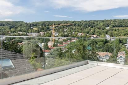 Alleine am Dach: PENTHOUSE auf 1 Wohnebene mit Fernblick in die Weinberge
