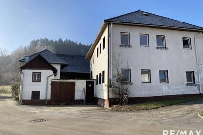 ***Sanierungsbedürftiger Bauernhof mit Stall und Scheune in ruhiger Dorflage***
