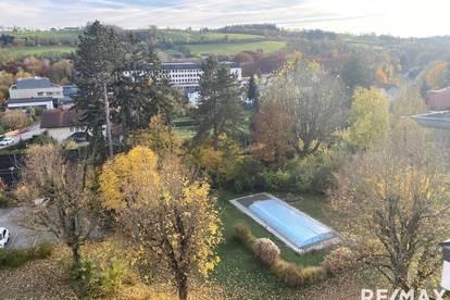NEUER PREIS!!***Supergroßes Penthouse mit 223 m² in wunderschöner Parkanlage***