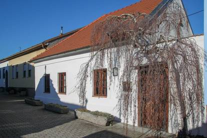 Attraktives Bauernhaus in Illmitz zu verkaufen