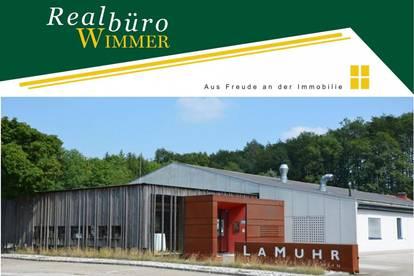 Betriebsliegenschaft bestehend aus Verkaufsfläche, Werkstatt/Lager, Büro, Freifläche/Parkplätzen - auch Miete von Teilflächen möglich