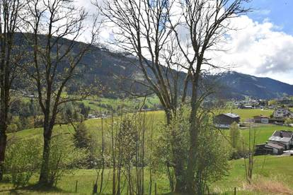 W-02HDVH Gemütliche Wohnung mit Berghütten-Feeling