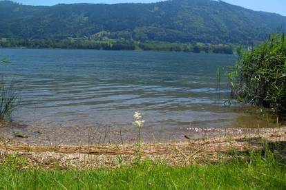 Herrlicher Seegrund am Ossiacher See