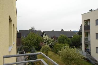 """""""Peter Rosegger"""" ZentrumReininghausSüd 3ZI+West/ Balkon ruhig,ökologisch Massivholz/Lehmbauweise"""